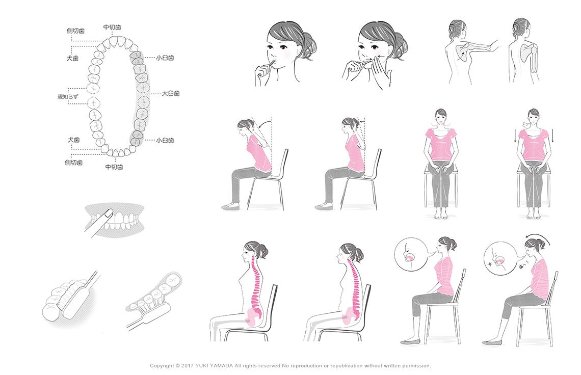 「5つの姿勢がキレイをつくる」のイラスト