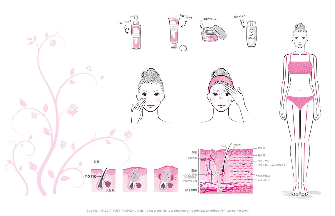 スキンケアのイラスト(洗顔の仕方、ニキビのでき方、スキンケア用品などのイラスト)