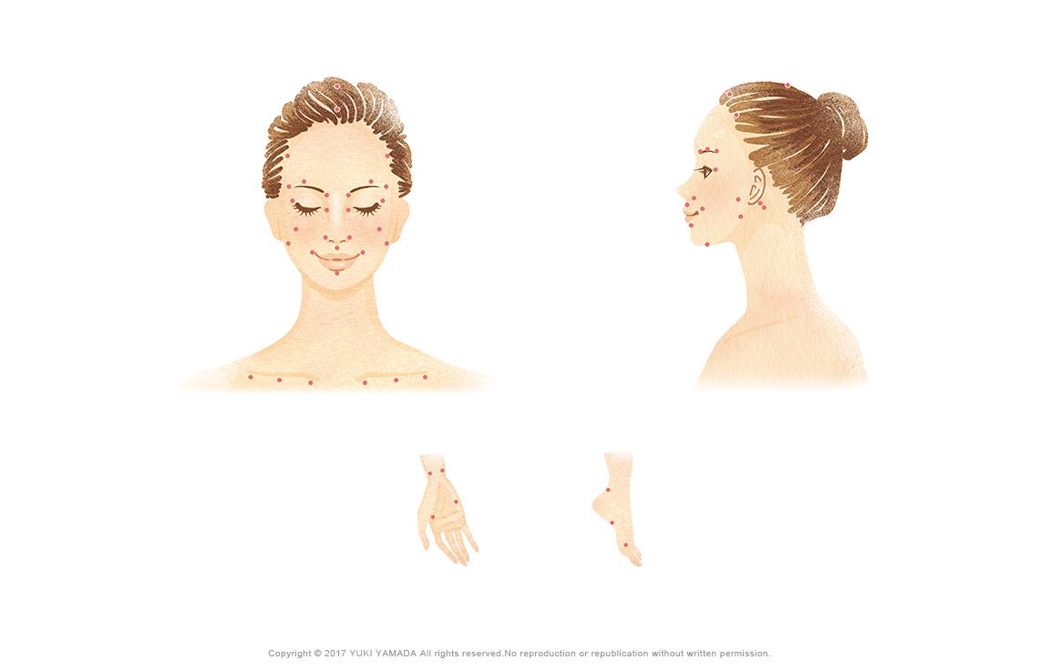 顔や手足のツボの位置を表したイラスト(スキンケア)